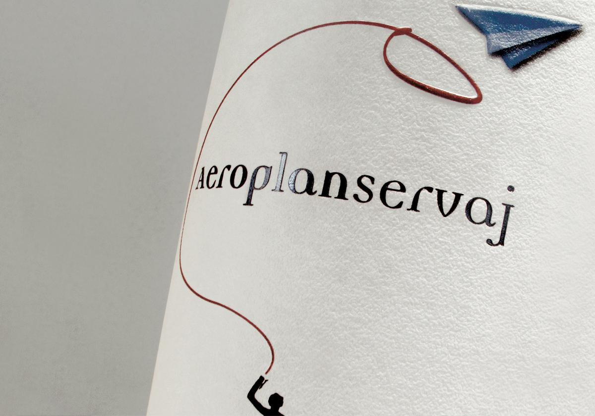 particolare-vino-aeroplan-servaj-clerico